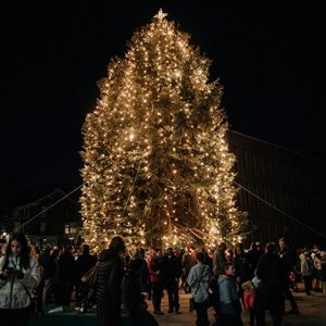 Bethlehem S Community Tree Lighting Ceremony Christmas